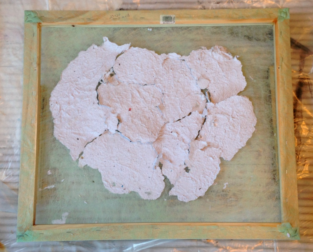Paper Stromatilites week 1