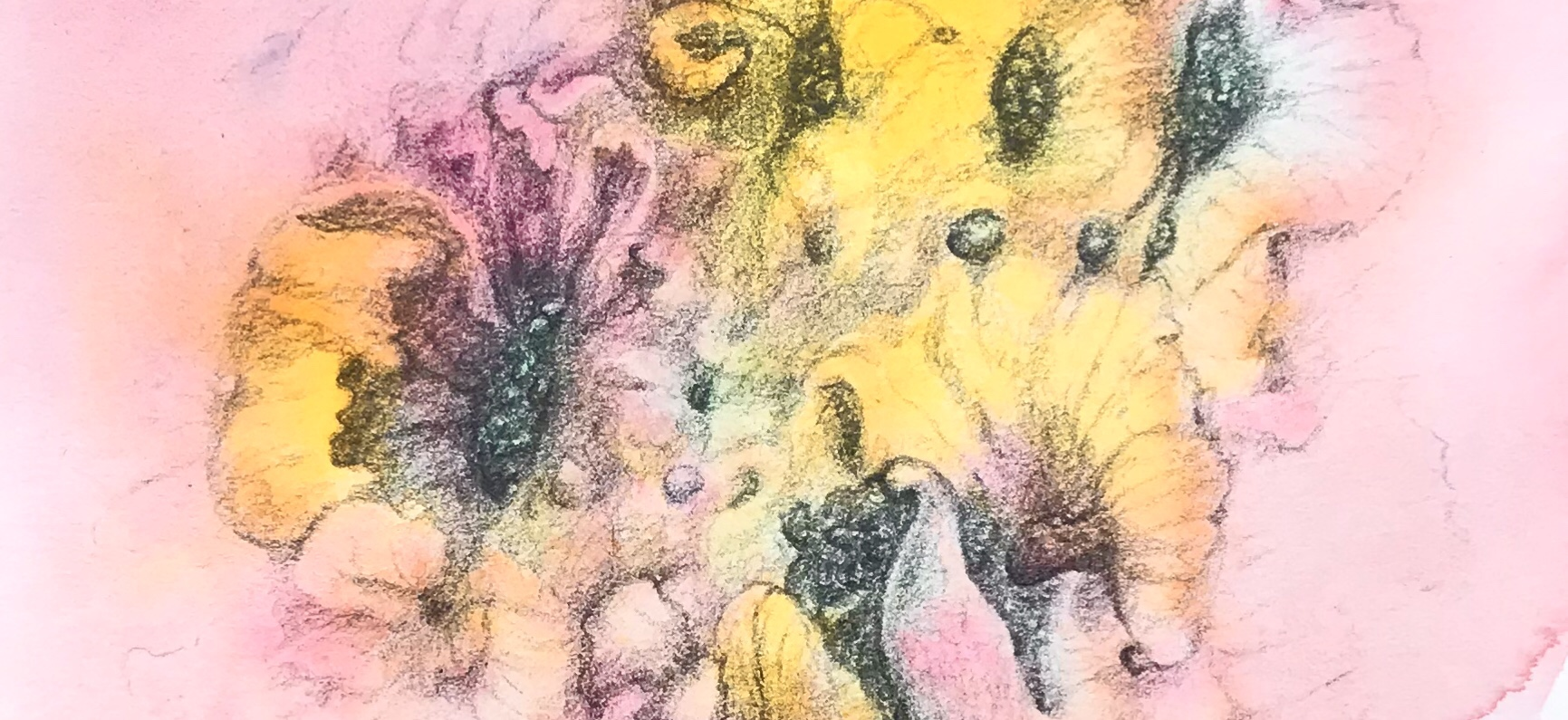 Detail of an original watercolor/ drawing by MJ Seal depicting some abstract flower like forms