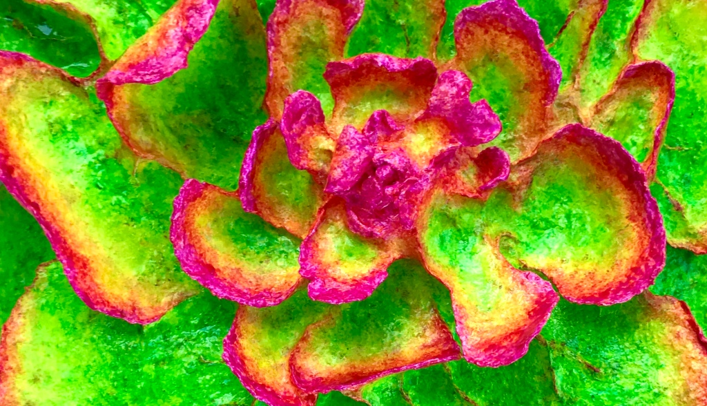 detail of An abstract paper mache sculpture by MJ Seal that resembles a psychedelic lichen or flower in hues of chartreuse and magenta