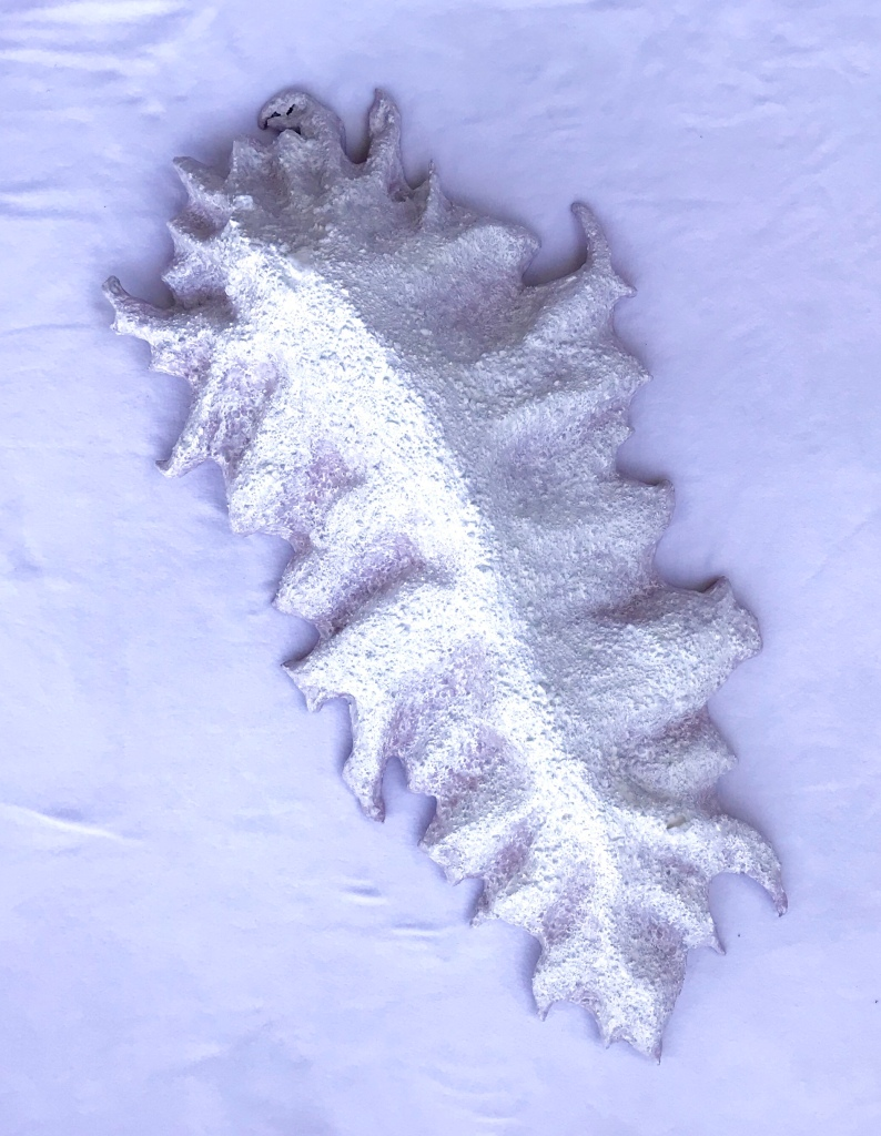Dorsal view of an abstract paper mache sculpture by MJ Seal that resembles a cross between a mountain and some primitive clawed sea creature