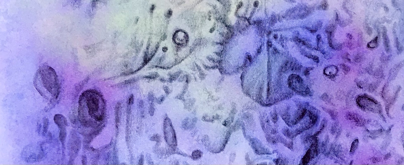 Detail of a biomorphic drawing in graphite pencil over an abstract watercolor painting by MJ Seal
