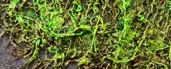 close up detail of an abstract sculpture in progress by MJ Seal made from sackcloth and rope that resembles a giant green sea fan